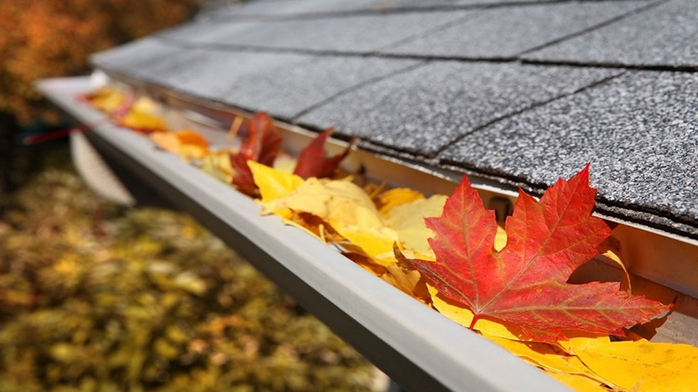 DIY vs Professional Gutter Cleaning