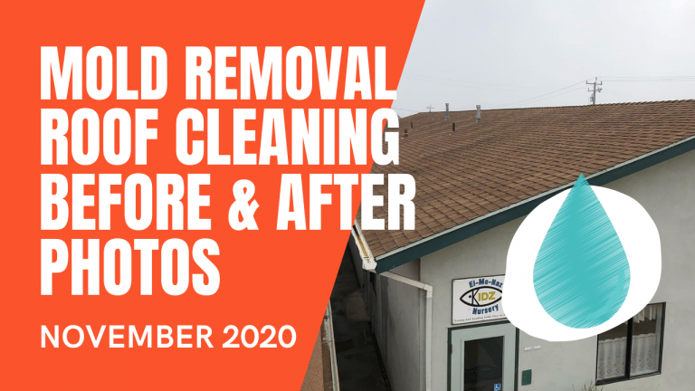 Mold Removal, Roof Cleaning Before After Video